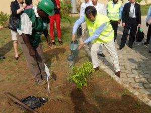2013年11月30日 出張 ンコック経済特区での記念植樹(ガボン・リーブルビル)